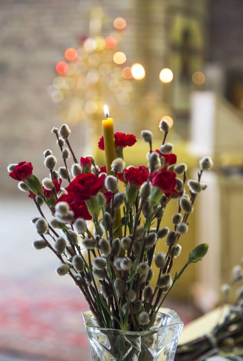 Картинки верба с цветами
